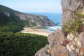 Tsitsikamma Hiking Trail, Natures Valley, Garden Route, South Africa