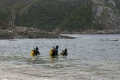 Storms River diving - Encounters of the marine kind, Stormsriver, Garden Route, South Africa