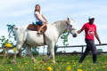 Pony Rides, George, Garden Route, South Africa