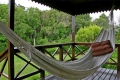 Forest Edge - Nature-lovers Retreat, Self Catering, Knysna, Garden Route, South Africa