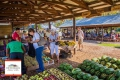 Outeniqua Family Market George, Farmer's Market, George, Garden Route, South Africa