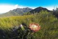 George Peak Trail, George, Garden Route, South Africa