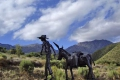 The Donkey Trail, Calitzdorp, Klein Karoo, South Africa