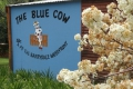 The Blue Cow, Coffee Shop, Barrydale, Little Karoo, South Africa