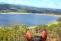 Saddle Up Horse Trails, Wilderness, Garden Route, South Africa