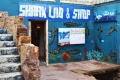 The Shark Lab, Mossel Bay, Garden Route, South Africa