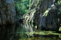 Outeniqua Nature Reserve  | George, George, Garden Route, South Africa