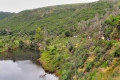 Wolwedans Trail, Great Brak River, Garden Route, South Africa