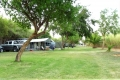 Karoowater Guest Farm, Camping Site, Calitzdorp, Little Karoo, South Africa