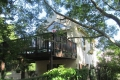 Syringa Tree Cottage, Self Catering, Knysna, Garden Route, South Africa