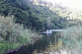 Sedgefield Boat Hire, Sedgefield, Garden Route, South Africa