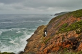 Heritage Trail, Herolds Bay, Garden Route, South Africa