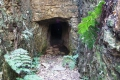 Millwood Mine Walk, Knysna, Garden Route, South Africa