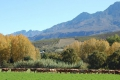 Handcrafted Cheese Tours, Latana Cheese, Oudtshoorn, Klein Karoo, South Africa