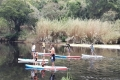 Supingkeurbooms, Plettenberg Bay, Garden Route, South Africa