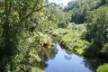 Swartrivier or Black River Pass, George, Garden Route, South Africa