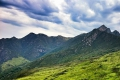Cradock Pass Trail, George, Garden Route, South Africa
