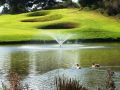 Goose Valley Golf Estate, Plettenberg Bay, Garden Route, South Africa