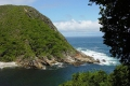 Mouth and Lookout Trail - Tsitsikamma Section, GRNP, Storms River, Garden Route, South Africa