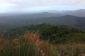 Outeniqua Hiking Trail, Western Cape, Garden Route, South Africa