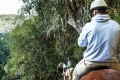 Hog Hollow Horse Riding Trails, Plettenberg Bay, Garden Route, South Africa